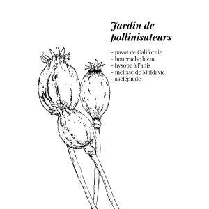 semences, jardinage, Les Bees, illustration